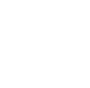 blue-angels-n-cal-logo